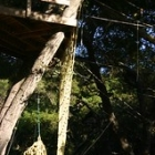 """Ropes Course @ Shalom Institute • <a style=""""font-size:0.8em;"""" href=""""http://www.flickr.com/photos/38823516@N03/7184990111/"""" target=""""_blank"""">View on Flickr</a>"""