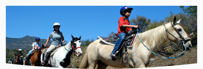 Horseback Riding & Animal Center